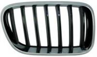 Решетка радиатора BMW X3 (F25) R